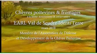 Chèvres Poitevines à la ferme bio Val de Seudre Identi'Terre de Benoît Biteau